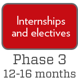 Phase 3: internships and electives