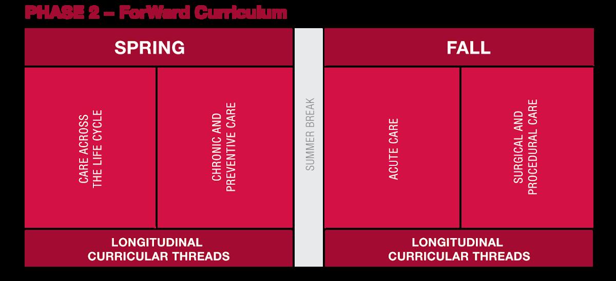 A curriculum timeline