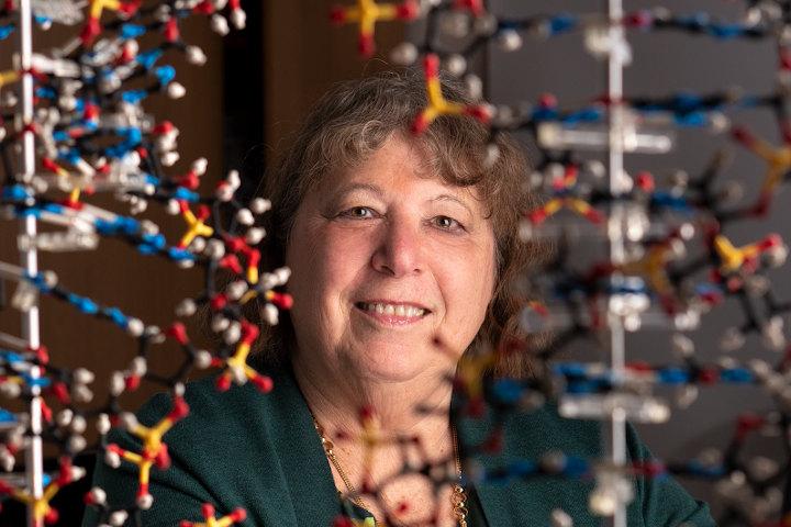 Ann Palmenberg